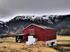 Farms and pasturing animals are seen as cultural landscapes (Photo: Ann E. Lennert).