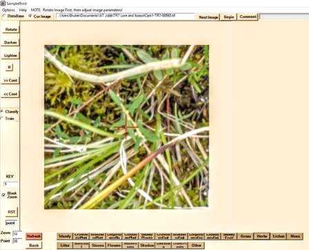 """Example of image analysis in """"Sample Point Software""""."""